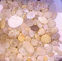 Cape May Diamonds